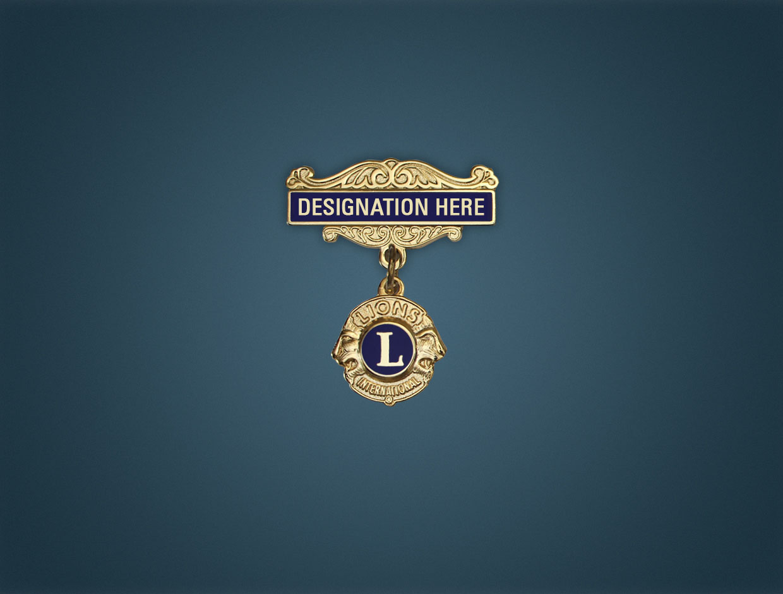 Lions Designations Lapel Pin