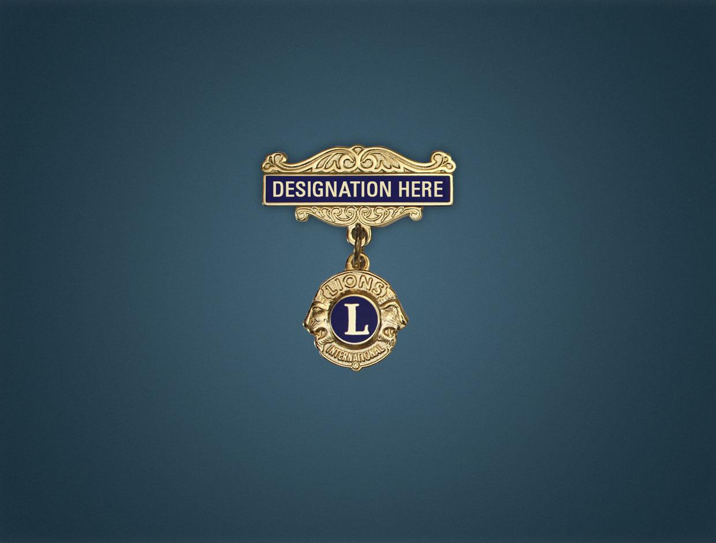 Lions Charter Designations Lapel Pins