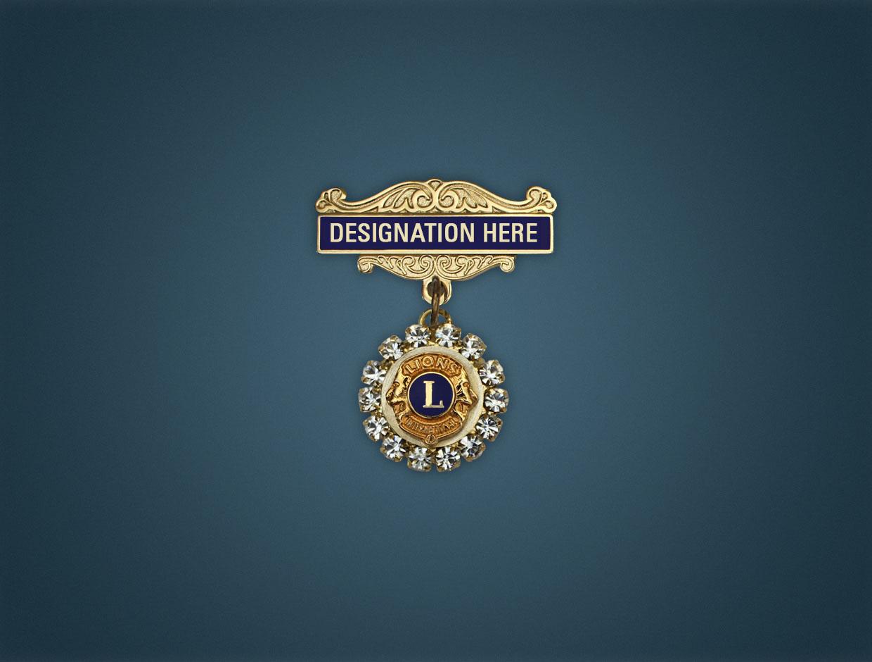 Lions Charter Stone Designations Lapel Pins