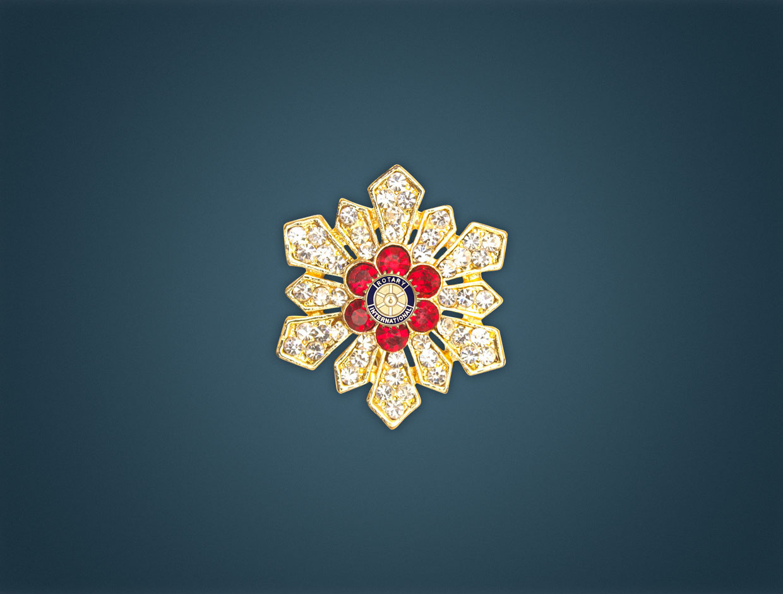 Rotary Brooch