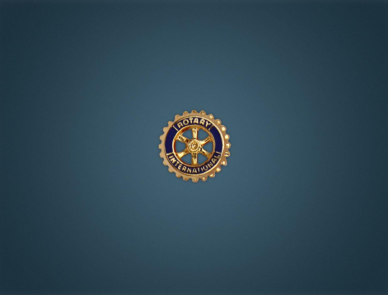 Rotary Member Pin