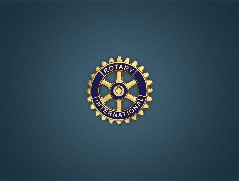 Large Rotary Member Pin