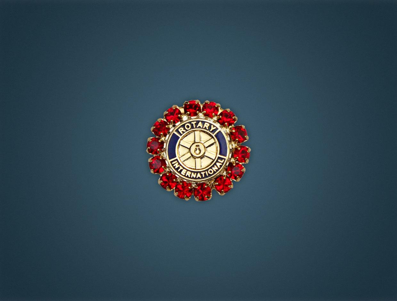 Rotary Stone Member Pin