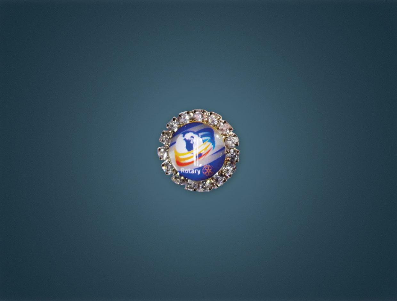 Rotary 2016-17 Theme Stone Lapel Pin