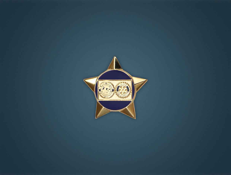 Rotary Star Foundation Lapel Pin