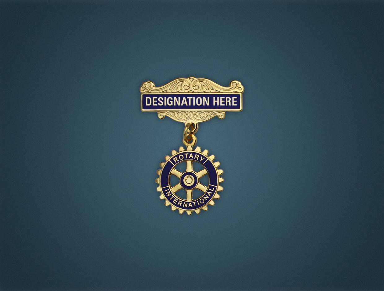 Rotary Designations Lapel Pins (Set of 16)