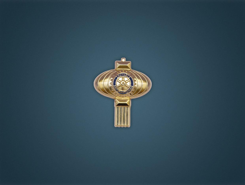 Rotary 2014 Theme Lapel - 3D